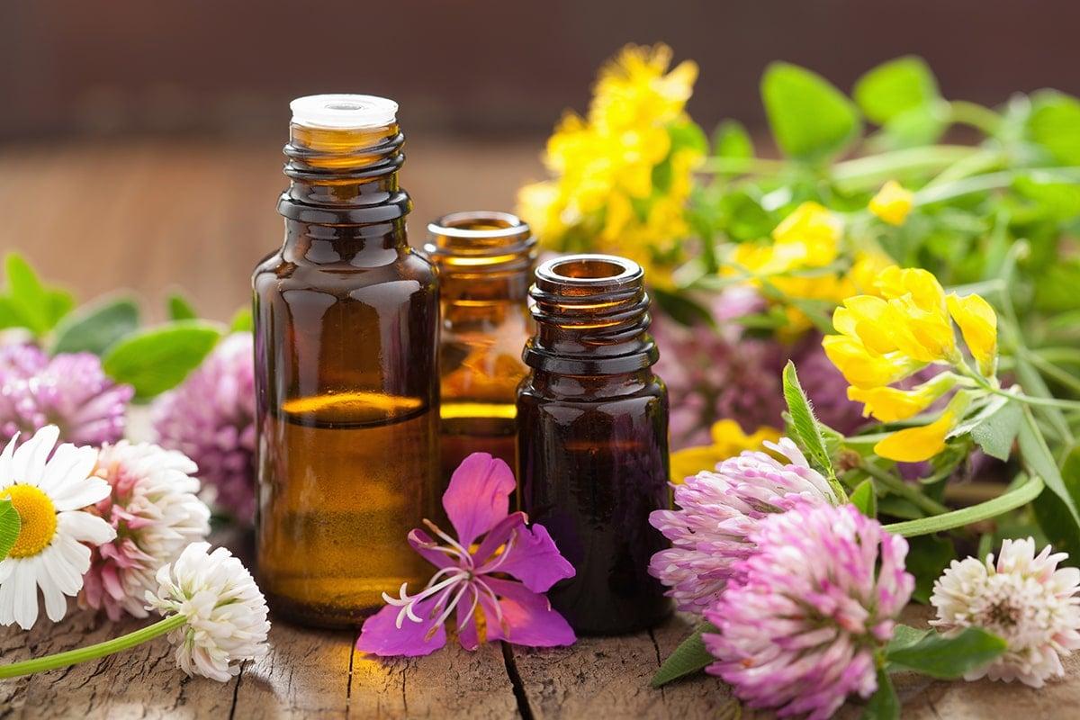 Natural plant essential oils