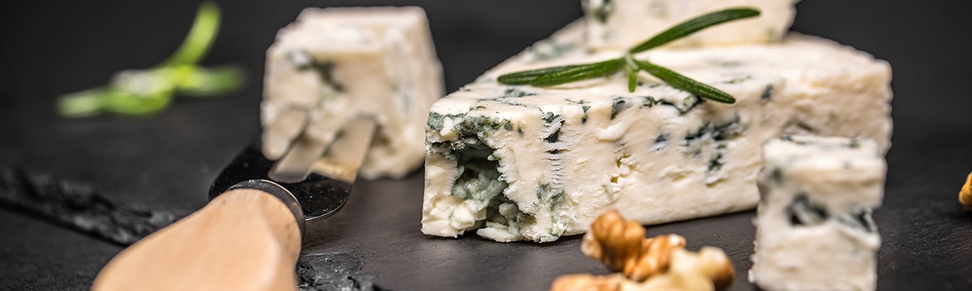 Blue cheese with mold